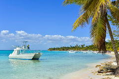 Catamaran en Palm op Exotisch Strand bij Tropisch Eiland Stock Fotografie