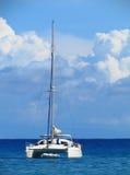 Catamaran in het blauwe overzees Royalty-vrije Stock Foto's