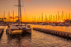 Catamaran in Honolulu Hawaii royalty free stock image