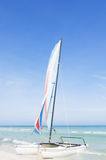 Catamaran with its colorful sails wide open Stock Photography