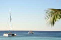 Catamaran katamaran boat Stock Photography