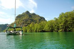 Catamaran at Langkawi Unesco Geo Forest Park. Catamaran anchored at the famous UNESCO Kilim Geo-forest, Langkawi Island, Malaysia in clear water and mangrove Stock Image