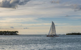 A catamaran in the middle of the ocean on a summers day Stock Images