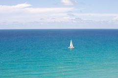 Catamaran in the ocean Royalty Free Stock Photo