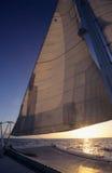 Catamaran op Caraïbische overzees - Dominicaanse republiek Royalty-vrije Stock Afbeelding