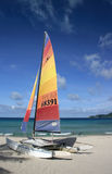 Catamaran sail on the beach. A beached catamaran with muticolored sails up and blue sky Royalty Free Stock Photos