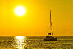 Catamaran sailboat on golden sunset Stock Images