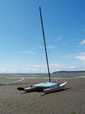 Catamaran Sailboat Stranded on Beach Low Tide Royalty Free Stock Image