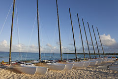 Catamaran sailboats Royalty Free Stock Photo
