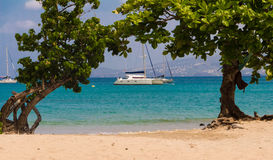 The catamaran and sailboats anchored in waters of caribbean beac Stock Images
