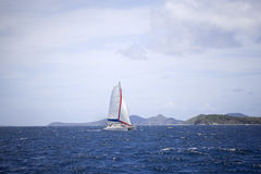 Catamaran sailing Royalty Free Stock Image