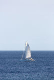Catamaran Sailing Stock Images