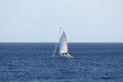 Catamaran Sailing Stock Photo