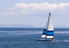 Catamaran Sailing. A small catamaran with blue and white striped sail sailing on the Pacific ocean. Santa Cruz Island in background royalty free stock photo