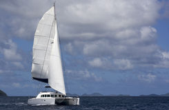 Catamaran sailing stock photography
