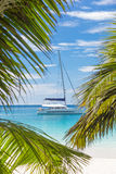 Catamaran sailing boat seen trough palm tree leaves on beach, Seychelles. Royalty Free Stock Photos