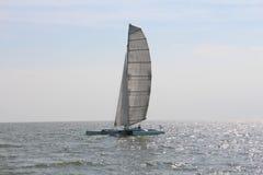 Catamaran sailing in the morning light. With sail Royalty Free Stock Photo