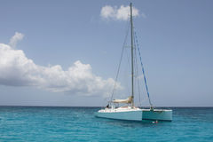 Catamaran in saona beach Stock Photography