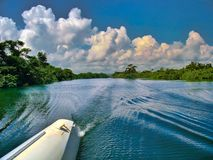 On a catamaran on the Sittee River in Belize stock photos