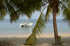 Catamaran vous attendant Photographie stock