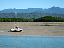 Catamarano sugli appartamenti di fango di marea fotografia stock libera da diritti