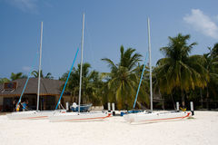 Catamarans on the beach. Of tropic island Royalty Free Stock Photo