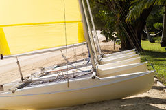 Catamarans on beach. Catamarans lined up on the beach for hire Royalty Free Stock Photos