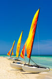 Catamarans at the beach of Varadero in Cuba. Three catamarans with their sails painted in bright colors at the shore of Varadero beach in Cuba Royalty Free Stock Images