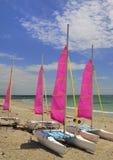 Catamarans, Bretagne, Frankrijk Royalty-vrije Stock Foto's