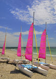 Catamarans, Brittany, France Royalty Free Stock Photos