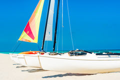 Catamarans with colorful sails on a tropical beach Stock Photos