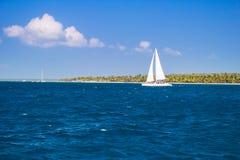 Catamarans cruising the sea Royalty Free Stock Photography