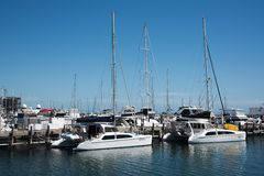 Catamarans dans la marina images libres de droits