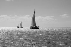 Catamarans on the sea Stock Images