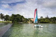 Catamarans. A small catamaran moored on a beautiful bay and used for a sailing school Royalty Free Stock Image