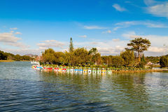 Catamarans at Xuan Huong Lake Royalty Free Stock Photo