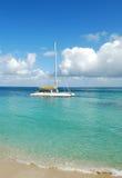 catamaranwhite Royaltyfri Fotografi