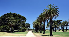 Catani Gardens in St Kilda, Melbourne Royalty Free Stock Photography