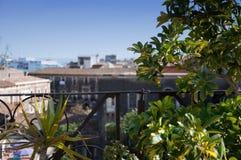 Catania, Sicília Caminhadas em torno da cidade Foto de Stock Royalty Free