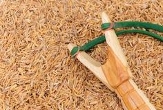 Catapulte en bois de fronde  Photographie stock libre de droits