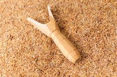 Catapulte en bois de fronde Photo stock