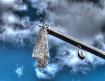 Catapulte médiévale photographie stock libre de droits