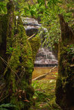 Cataract Falls Stock Images