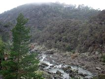 Cataract Gorge royalty free stock image