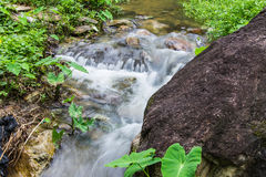 Cataract in hauykeaw waterfall , Doi Suthep-Pui Nationnal Park Royalty Free Stock Photos