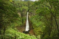 Free Catarata Del Toro-Costa Rica Royalty Free Stock Images - 33095349
