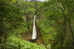 Catarata del Toro-Costa Rica Royalty Free Stock Images