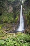 Catarata del Toro Waterfall Stock Image