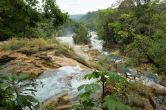 The Cataratas de Agua Azul,Chiapas,Mexico Royalty Free Stock Photos
