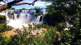 Cataratas de Iguazu en Misiones, Argentina Arkivfoton